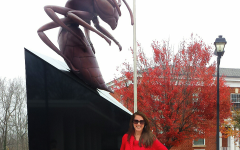 Lynchburg College Hornets!